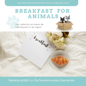 Breakfast for Animals